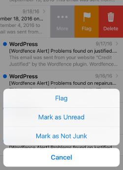 Screenshot of iPhone mail not junk screen