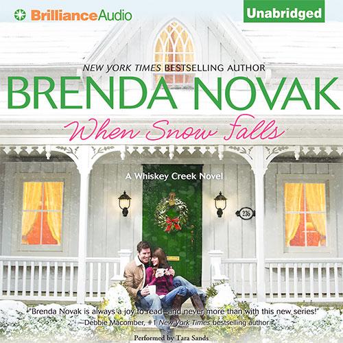 When Snow Falls Audio Cover Art