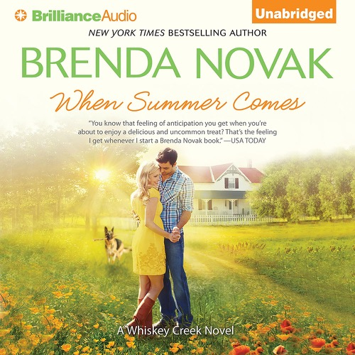 When Summer Comes Audio Cover Art