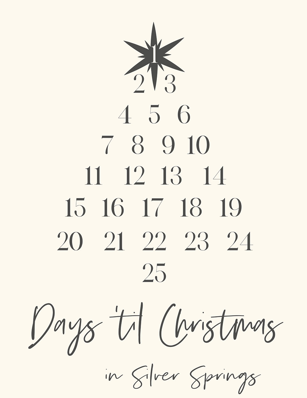 The CHRISTMAS IN SILVER SPRINGS Countdown Contest!